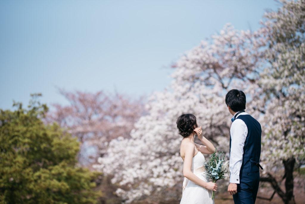 前撮り 洋装 桜 前撮り 東京