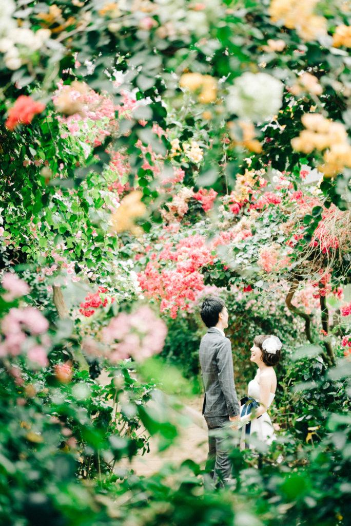 福岡 フォトウェディング 植物園